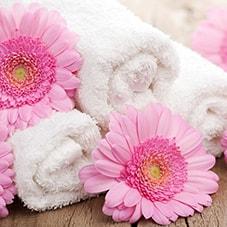 25. Mai - Tag des Handtuchs